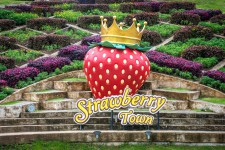 Straberry Town